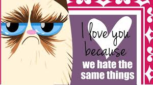 grumpy cat valentines grumpy cat cards for that special someone