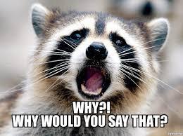 Racoon Meme - raccoon psych meme weknowmemes generator