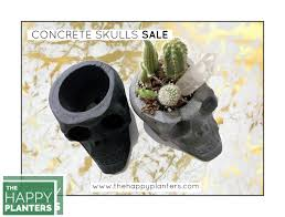 gold planter gift skull planter cement succulent pot concrete