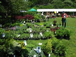 Prospect Park Botanical Garden Annual Plant Sale At The Botanic Garden Is This Week