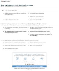 quiz u0026 worksheet cell division processes study com