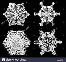 snowflake bentley museum bentley black and white stock photos u0026 images alamy