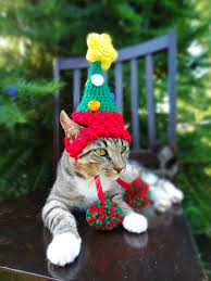 Halloween Costumes Cat Hat Christmas Cat Costume Hat Christmas Tree Hat Cats