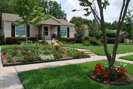power rake your yard with specialized services modern front yard