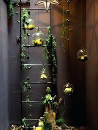 indoor hanging garden ideas u2013 exhort me