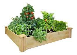 4x8 Raised Bed Vegetable Garden Layout Frugal Gardening Four Inexpensive Raised Bed Ideas