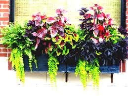 garden pots design ideas ideasor container gardens gardening succulent gardenall planting