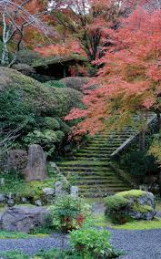 269 best japanese gardens u0026 plants images on pinterest japanese