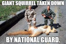 National Guard Memes - image tagged in funny memes imgflip