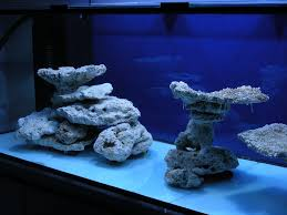 Aquascape Online Aquascaping Marine Minimalist Aquascaping Page 31 Reef