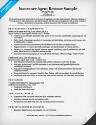 exles of cover letter for resume insurance cover letter sle resume companion