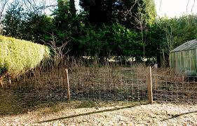 Deer Proof Fence For Vegetable Garden Deer Proof Fencing The Modern Gardener