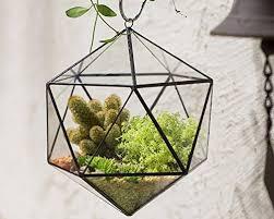 terrarium pots planters and container accessories