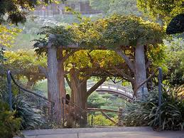 What Are Botanical Gardens Best Botanical Gardens And Oases In Los Angeles