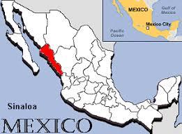 sinaloa mexico map license plates of sinaloa