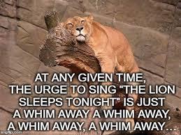 Lion Meme - sleeping lion meme generator imgflip