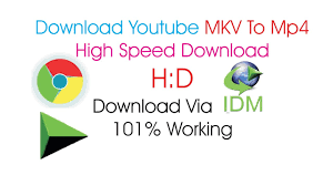 download youtube idm mp4 how to fix format mkv to mp4 when idm download video in chrome hindi