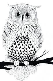 fancy idea owl coloring pages for adults best 25 coloring pages