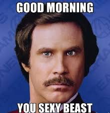 You Sexy Beast Meme - you sexy beast good morning meme