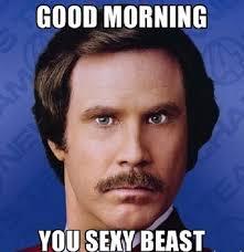 Sexy Meme - you sexy beast good morning meme