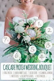 Cascade Bouquet Cascading Protea Wedding Bouquet Recipe