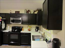 kitchen can i paint my kitchen cabinets painted kitchen cabinet