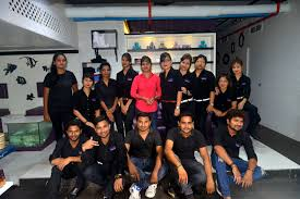 men u0026 women beauty salons in visakhapatnam u0026 hair cut