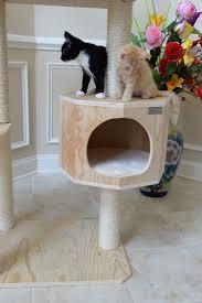 Outdoor Cat Condo Plans by Best 25 Cat Tree Condo Ideas On Pinterest Cat Condo Diy Cat