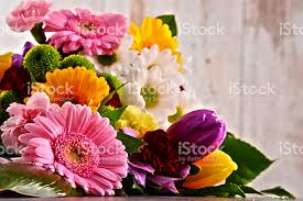 flowers images flower pictures images and stock photos istock