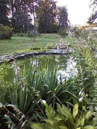 our favorite garden ponds from hgtv fans hgtv small backyard water