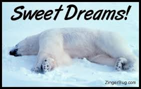 Sweet Dreams Meme - sweet dreams polar bear glitter graphic greeting comment meme