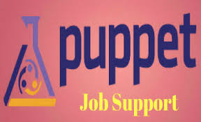 online xpeditor tutorial puppet job support puppet online job support from india vjs