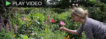 plantsomething long island how to gardening videos plant