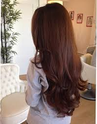 gorgeous hair i love the pretty brown color with chestnut brown hair extensions clip in human by gudhurpremiumhair