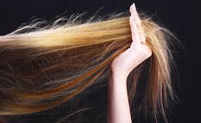 alimenti fanno bene ai capelli 10 alimenti per rinforzare unghie e capelli consiglibenessere org