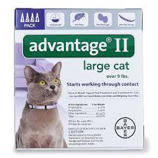 advantage ii flea control for cats bayer advantage ii topical