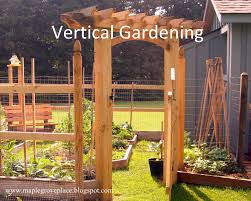 maple grove square foot and vertical gardening