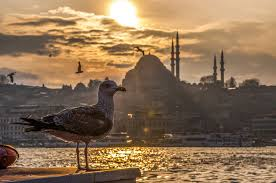 Is It Safe To Travel To Istanbul images Is it safe to travel to turkey in 2018 what to avoid turkey jpg
