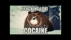 Coke Bear Meme - cocaine bear