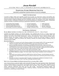 Entry Level Marketing Resume Samples by Executive Resume Sample Experience Resumes