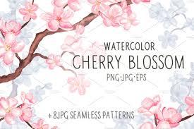 watercolor cherry blossom illustrations creative market