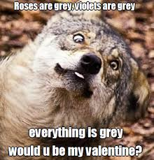Be My Valentine Meme - lol funny wolf meme joke wolves valentine funny wolf valentine