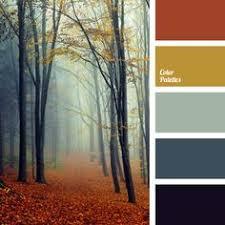 winter color schemes winter color palettes inspiration colors pinterest winter