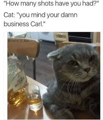 Drunken Memes - 29 funny memes about drinking and getting drunk