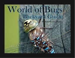 world of bugs u2013 backyard guide bula bug