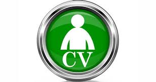 Resume Update Updating Your Resume Resume Shine Com