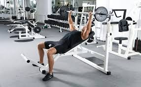 Bench Press Rack Best Bench Press Rack And Weight Set Guide