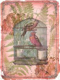 instant digital download paper vintage shabby chic bird cage