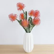 flowers free shipping indigo 100pcs leucospermum cordifolium hydrangea nutans flower