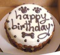 birthday cakes for dogs s birthday cake 2 21 11 baking soda doggies and